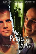 A Perfect Son