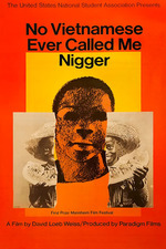 No Vietnamese Ever Called Me Nigger