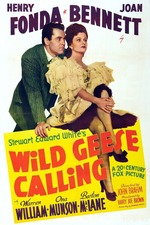 Wild Geese Calling