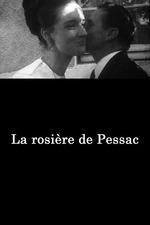 The Virgin of Pessac