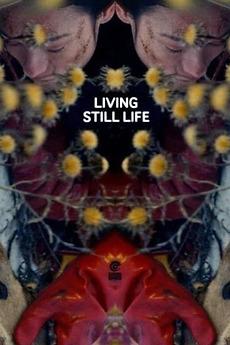 Risultato immagini per living still life film