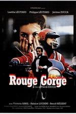 Rouge-Gorge