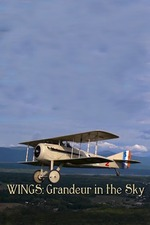 Wings: Grandeur in the Sky