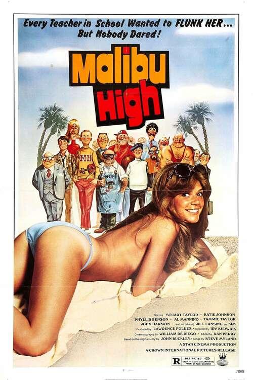 Malibu High movie poster