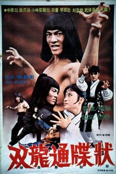 Double Dragon In Last Duel 1979 Directed By Nam Gi Nam Reviews
