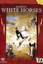 Majestic White Horses