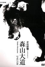 Memories of a Dog: Daido Moriyama's Journey to Photography