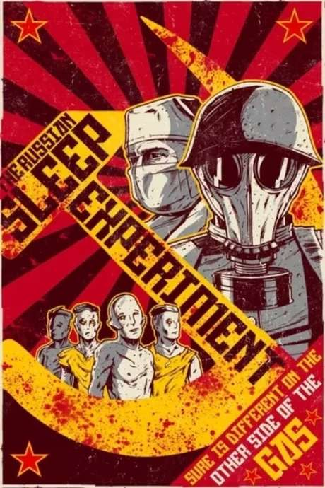 The Russian Sleep Experiment (2015) • Reviews, film ...