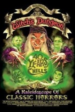 Witch's Dungeon: 40 Years of Chills