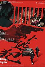 Teenage Fugitive
