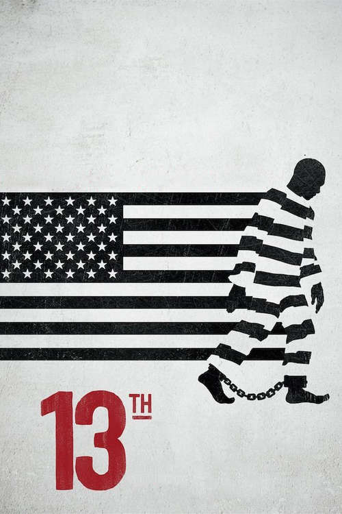 Film poster for 13th