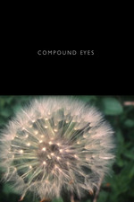 Compound Eyes No. 1