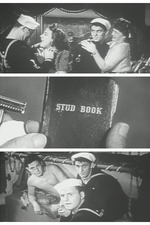 USS VD: Ship of Shame