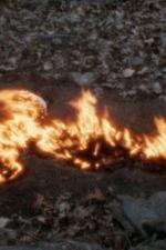Alma, Silueta en Fuego