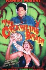 The Crawling Brain
