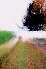 Brouillard #15