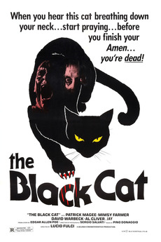 35272-the-black-cat-0-230-0-345-crop.jpg