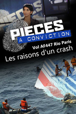 Pièces à conviction - Vol AF447 Rio Paris - Les raisons d'un crash