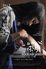 The Foolish Bird