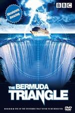 Dive to Bermuda Triangle