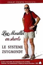 The Zsigmondy System
