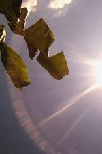 Amérika: Bahia de las Flechas
