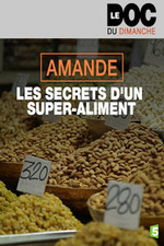 Amande, les secrets d'un super-aliment