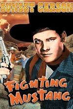 Fighting Mustang