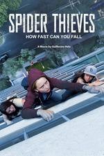 Spider Thieves