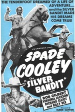 The Silver Bandit