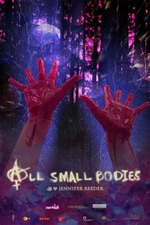 All Small Bodies