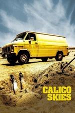 Calico Skies