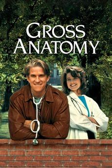 Gross anatomy cast