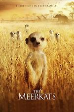 The Meerkats