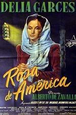 Rosa de América