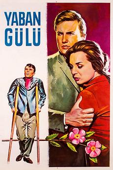 Yaban Gülü 1961 Directed By ümit Utku Film Cast Letterboxd