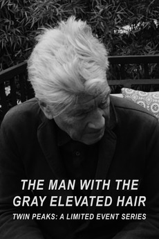 ‎the man with the gray elevated hair (2017) directed by
