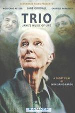 Trio. Jane's Music of Life