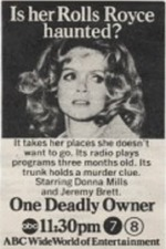 One Deadly Owner