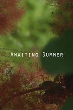 Awaiting Summer