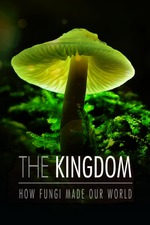 The Kingdom: How Fungi Made Our World