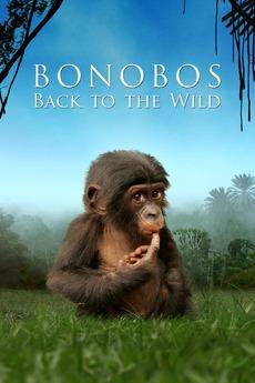 Beny: Back to the Wild