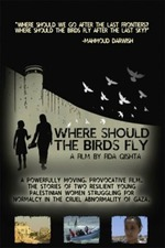 Where Should the Birds Fly?