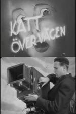 """Katt över vägen – ett försök till replik i diskussionen """"är film konst"""""""