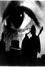 The Velvet Underground: Psychiatrist's Convention, NYC, 1966