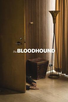 The Bloodhound
