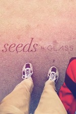 Google Glass: Seeds