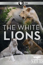 The White Lions
