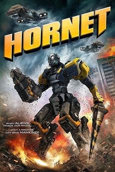 Hornet (2018) directed by James Kondelik, Jon Kondelik • Reviews