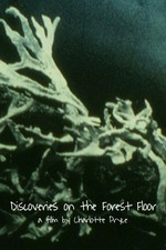 Discoveries on the Forest Floor 1-3